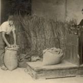 colonia-agricola-storia-04