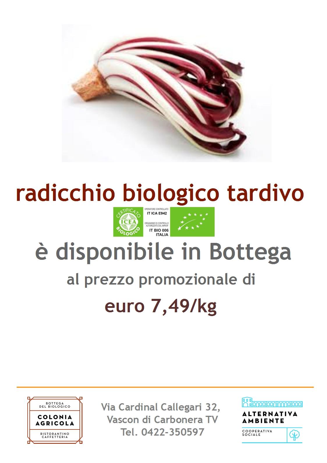 PromoRadicchio_01