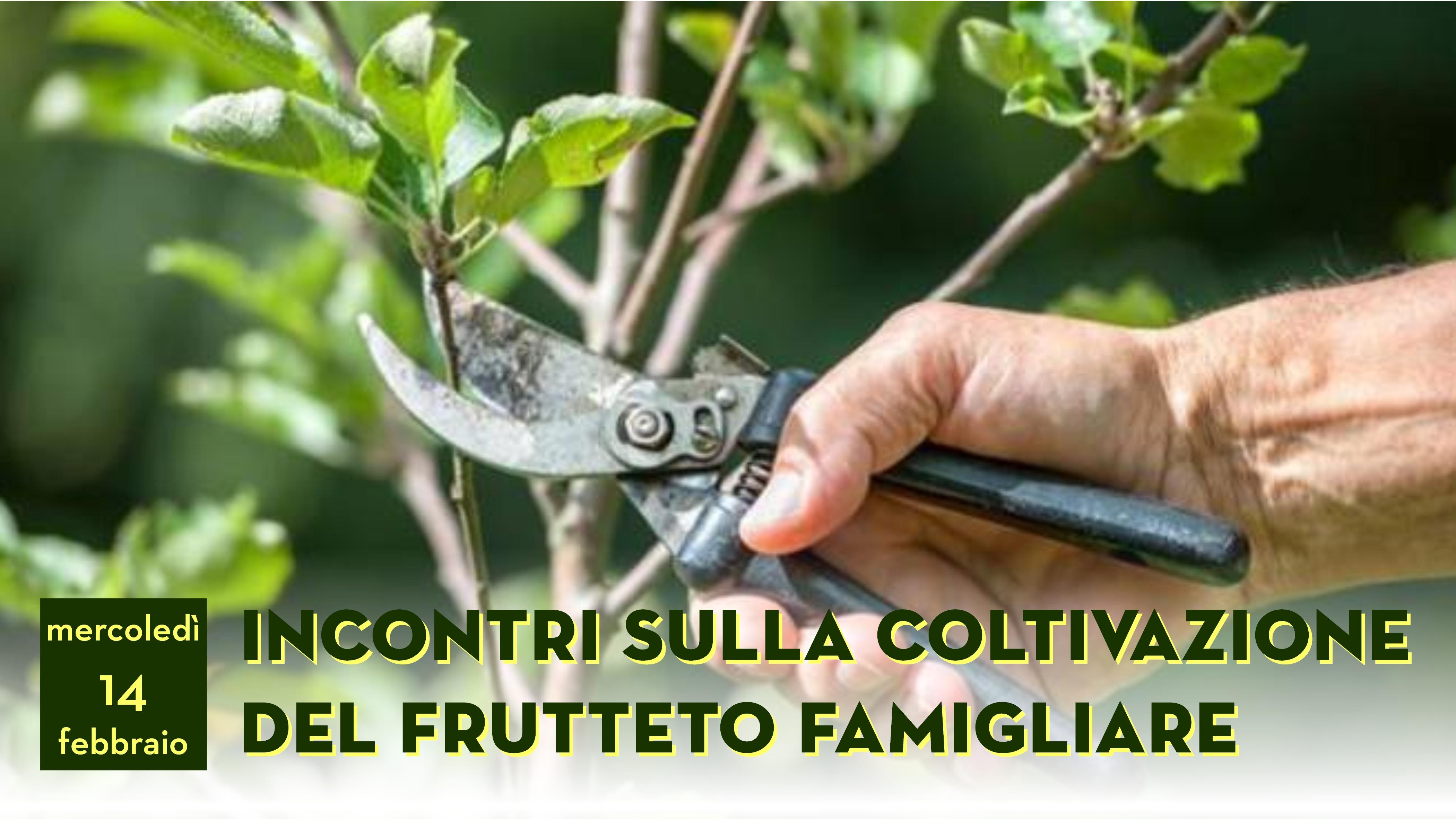 E0104_180214_CorsoPotatura_XSOC