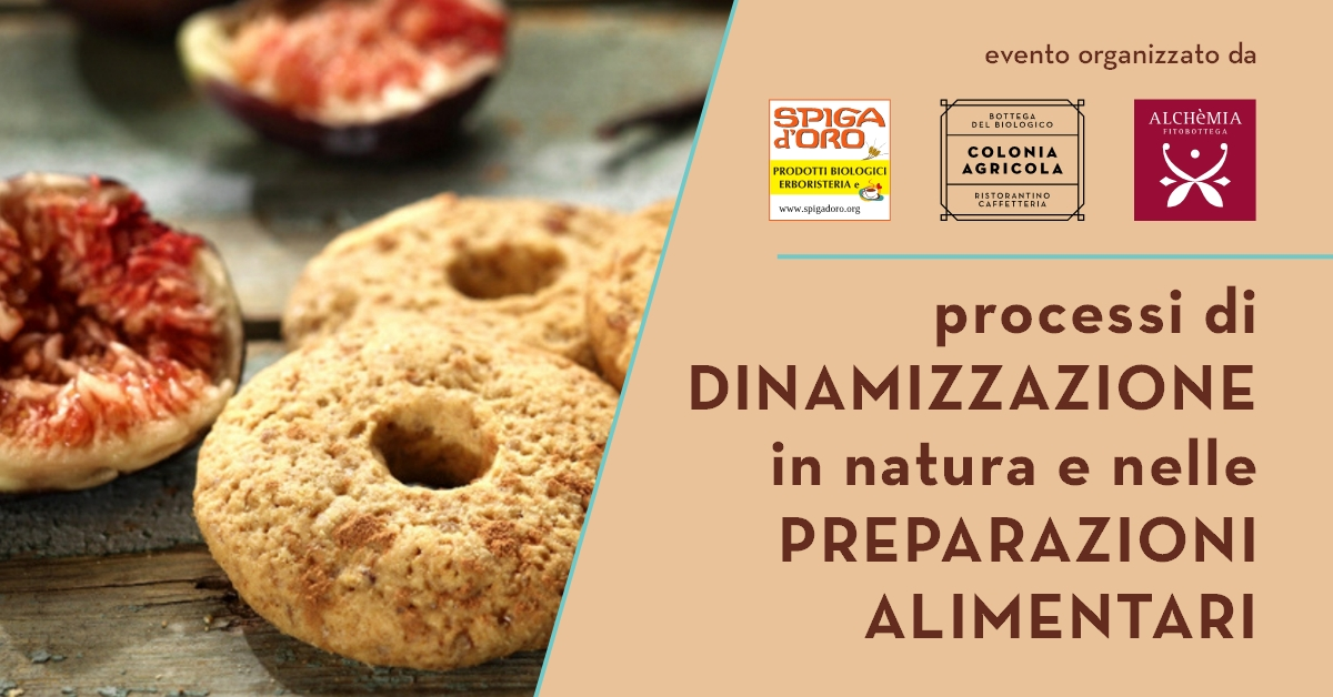 Dinamizzazione preparazione alimentare