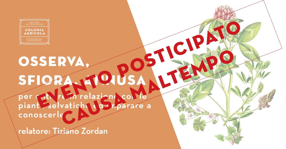 E0232_190504_UscitaErbette_Tiziano_2_XSOC