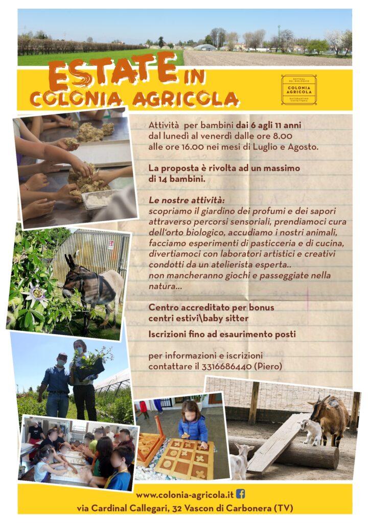 ESTATE IN COLONIA AGRICOLA