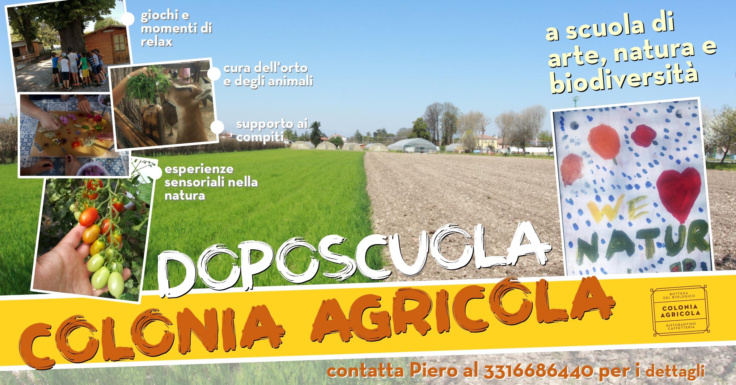 Doposcuola Colonia Agricola
