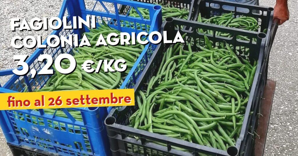 Promo Fagiolini