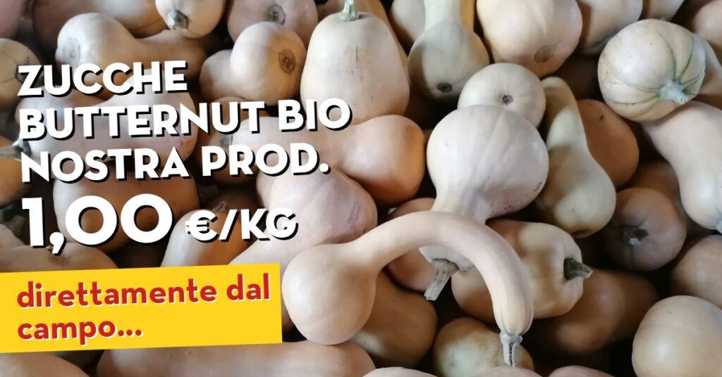 Offerta della settimana: Funghi shitake e Zucca Butternut. Tutto biologico di nostra produzione. In offerta fino al 28 novembre