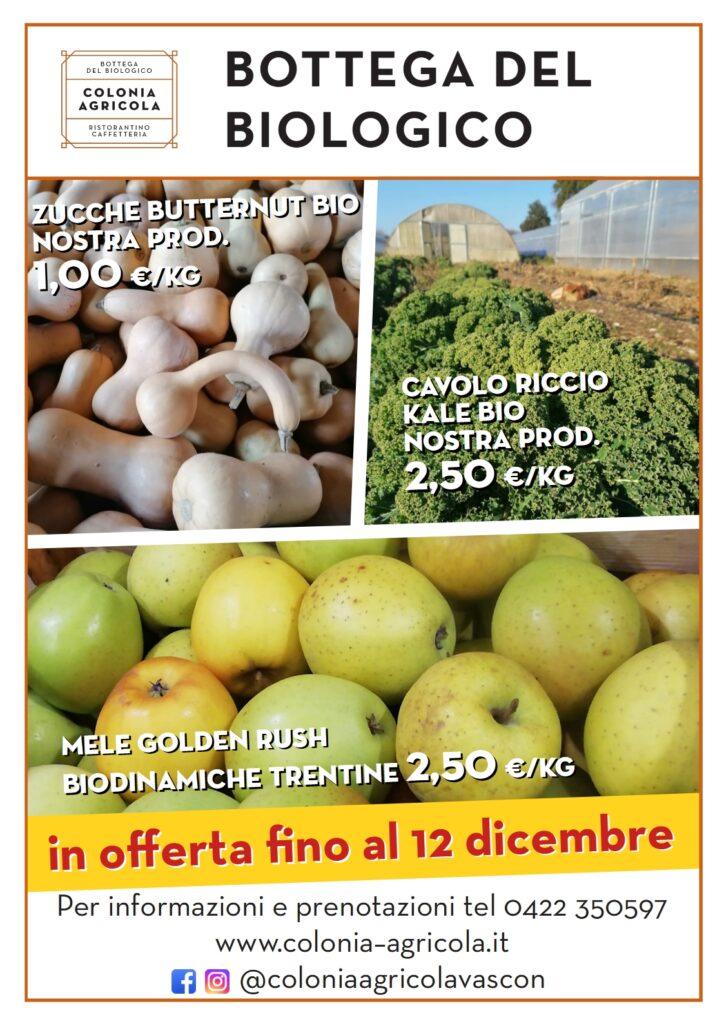 Offerta della settimana: zucche butternut bio, cavolo riccio kale bio e mele golden rush biodinamiche trentine