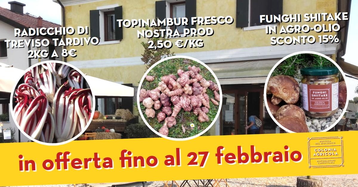Offerta della settimana: radicchio di Treviso tardivo 2kg a 8€, topinambur fresco nostra produzione 2,50€ al kg e funghi shiitake in agro-olio sconto del 15%.