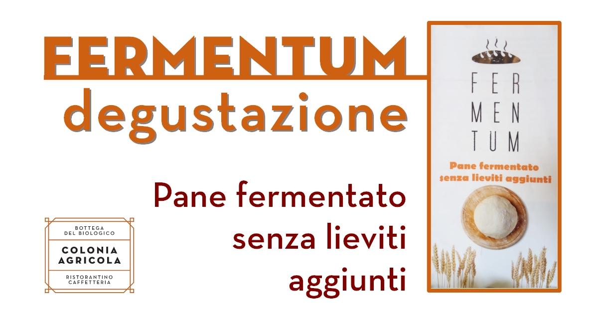 Fermentum pane fermentato