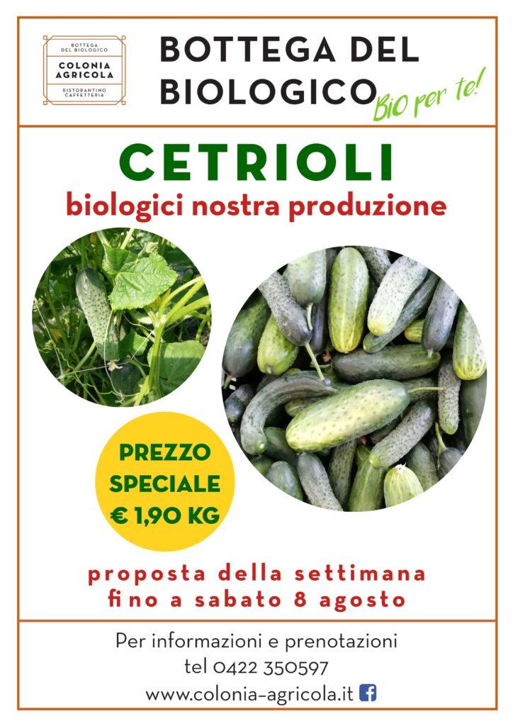 Promo cetrioli nostra produzione