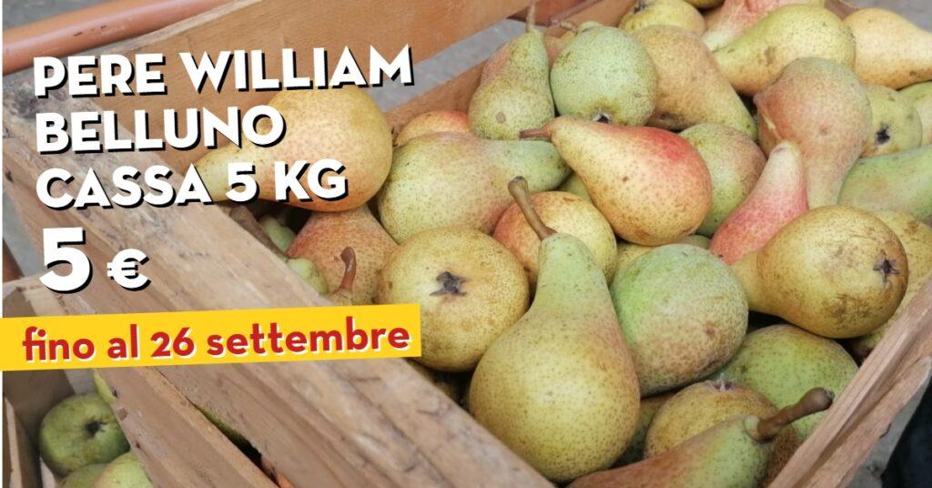 Promo Pere Williams