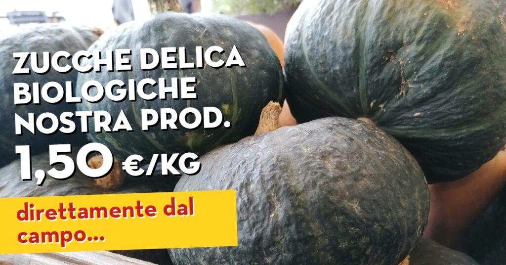 Promo radicchio variegato zucche delica nostra produzione