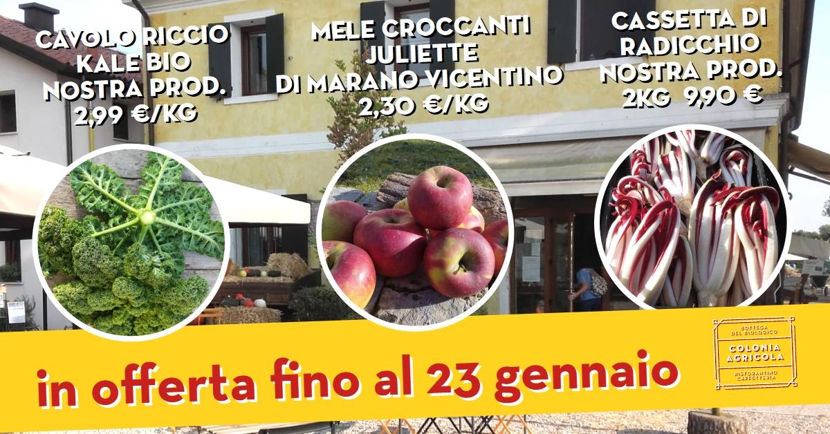 Offerta della settimana: cavolo riccio kale bio, radicchio e mele croccanti Juliette di Marano Vicentino