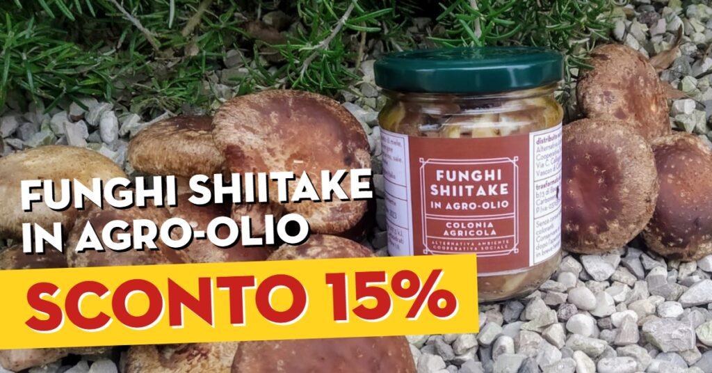 funghi shiitake in agro-olio