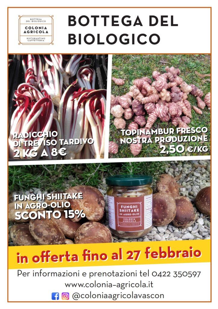 Offerta della settimana: radicchio di Treviso tardivo, topinambur e funghi shiitake in agro-olio