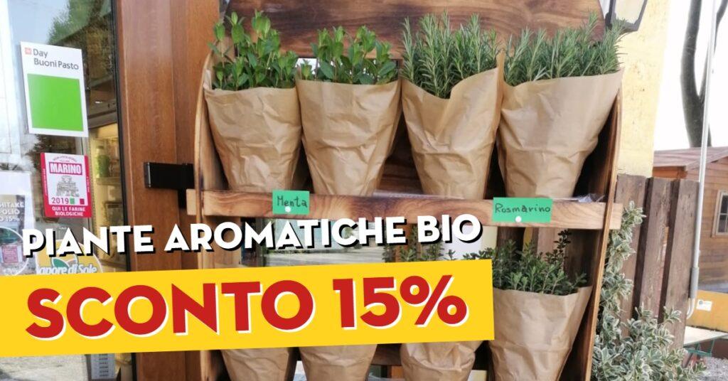 piante aromatiche bio