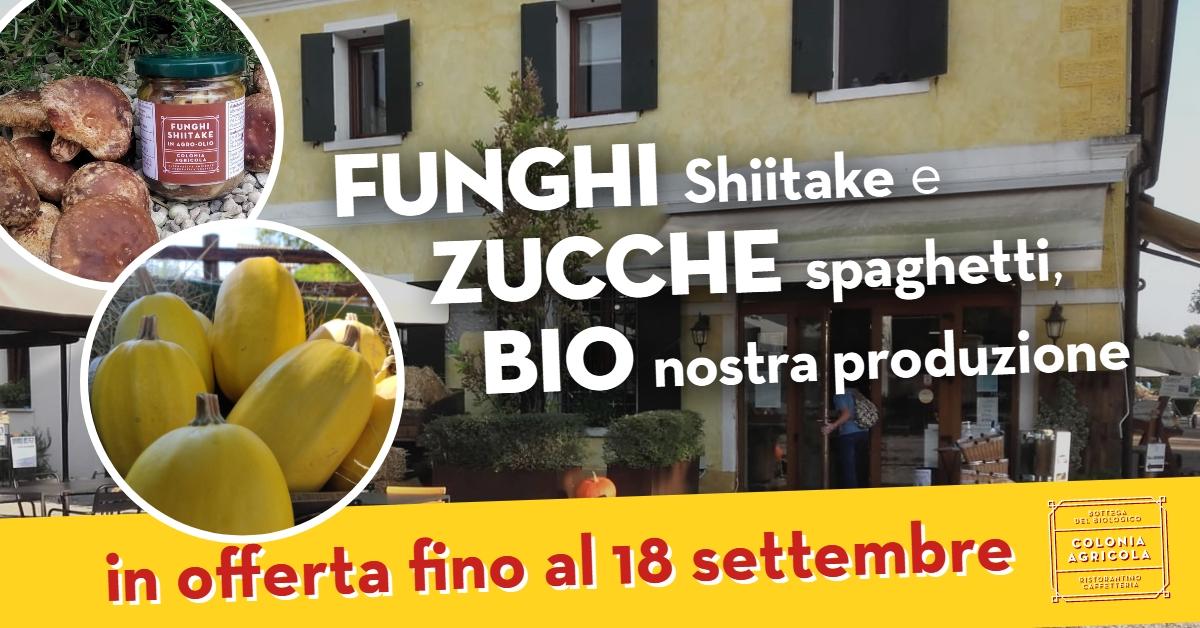 Funghi Shiitake e zucche spaghetti in offerta