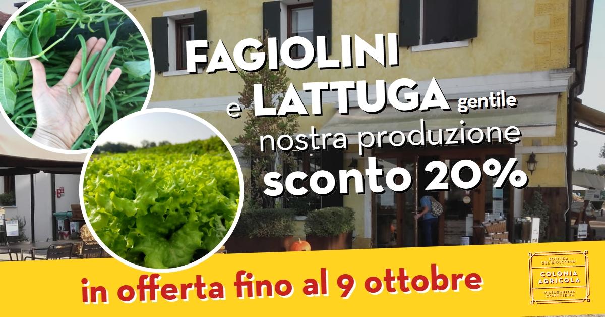 Promo fagiolini e lattuga gentile
